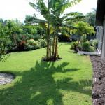 Florida-Traumhaus-Garten-DSC_0151