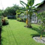 Florida-Traumhaus-Garten-DSC_0153